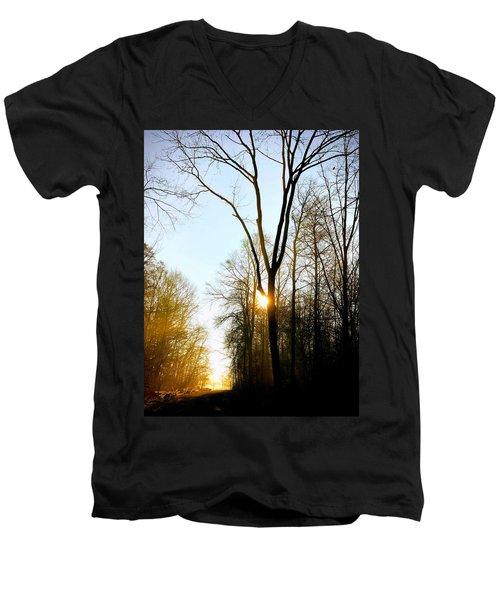 Morning Mood In The Forest Men's V-Neck T-Shirt