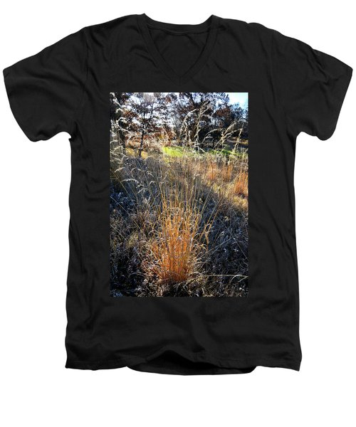 Morning Sun Backlights Fall Grasses In Glacial Park Men's V-Neck T-Shirt