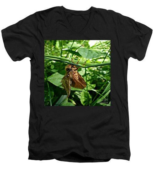 Moth At Rest Men's V-Neck T-Shirt