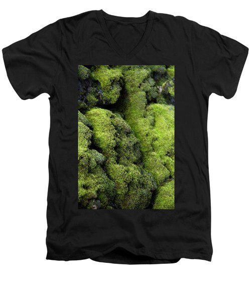 Mounds Of Moss Men's V-Neck T-Shirt
