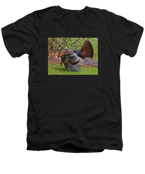Mr. Turkey Men's V-Neck T-Shirt