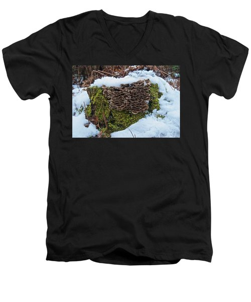 Mushrooms And Moss Men's V-Neck T-Shirt by Michael Peychich
