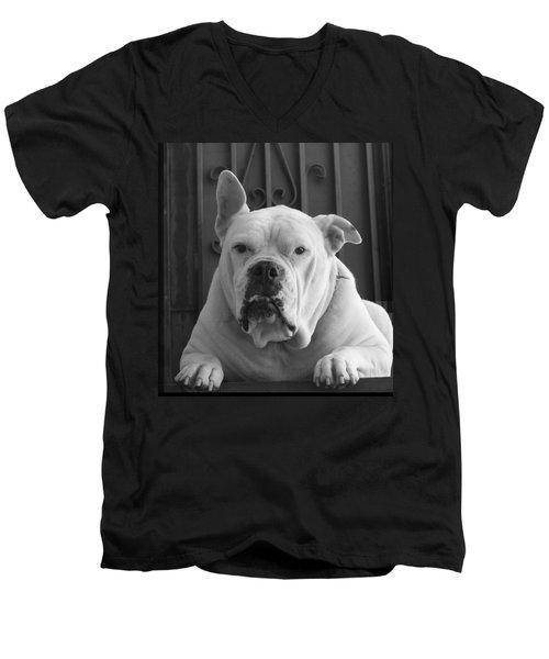 My 110lb American Bulldog Tank Men's V-Neck T-Shirt