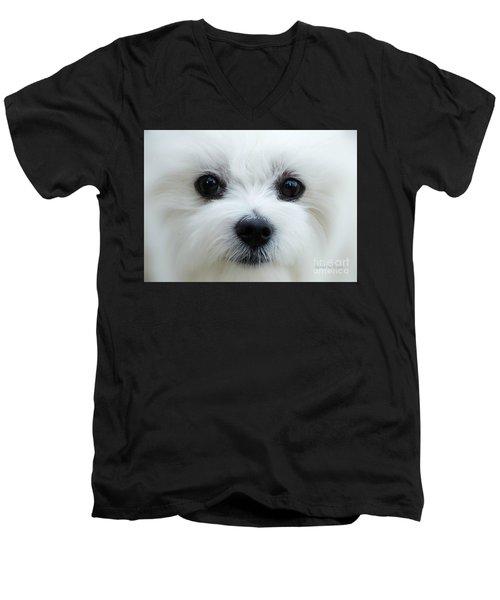 My Boy Men's V-Neck T-Shirt