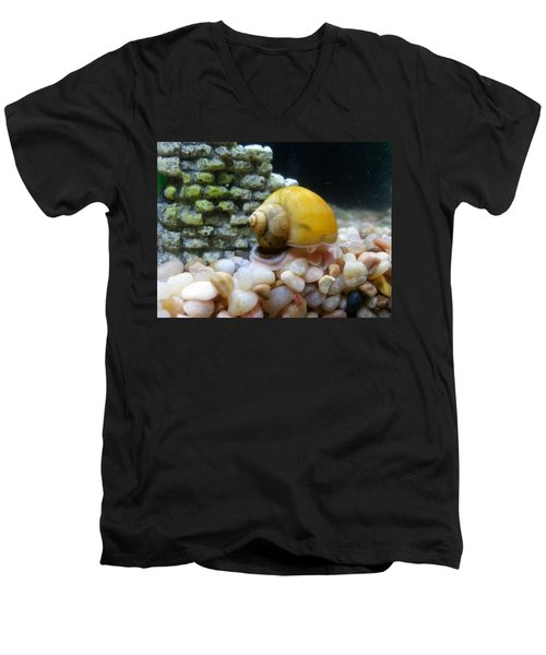 Men's V-Neck T-Shirt featuring the photograph Mystery Snail by Robert Knight