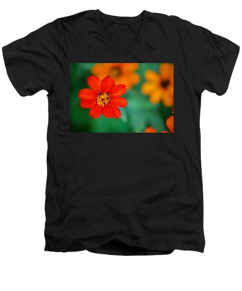 Men's V-Neck T-Shirt featuring the photograph Nature's Glow by Debbie Karnes