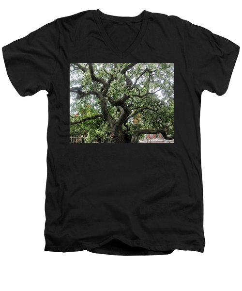 Natures Strength Men's V-Neck T-Shirt by Paul Meinerth