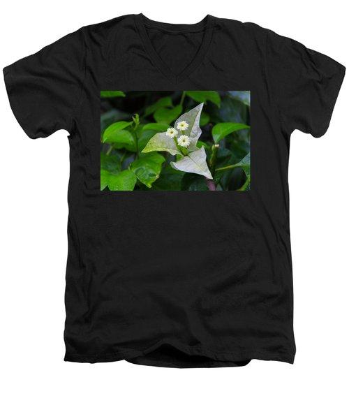 Nature's Triplets Men's V-Neck T-Shirt
