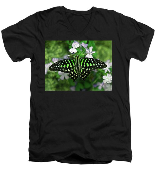 Neon --- Tailed Jay Butterfly Men's V-Neck T-Shirt