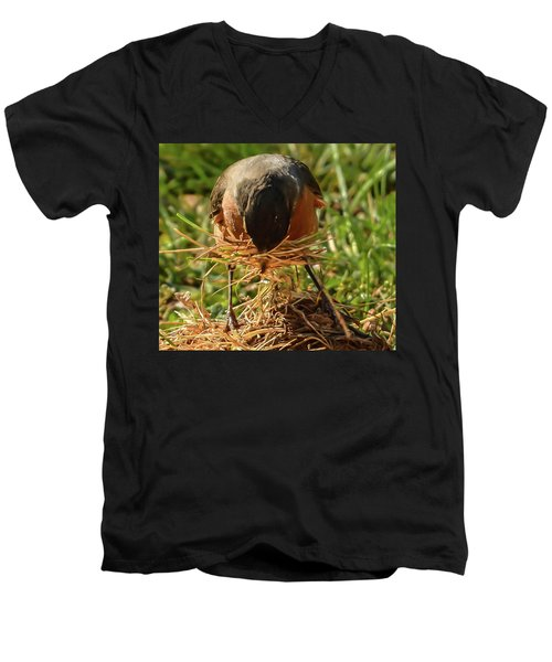 Nest Building Men's V-Neck T-Shirt
