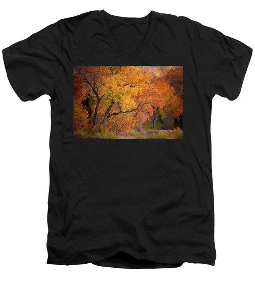 New Mexico Gold Men's V-Neck T-Shirt