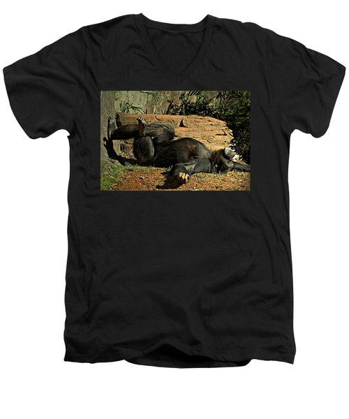 Men's V-Neck T-Shirt featuring the photograph No Worries by Jessica Brawley