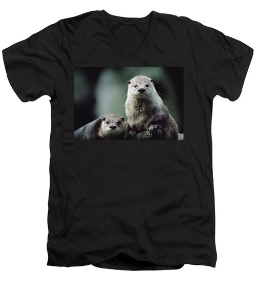 North American River Otter Lontra Men's V-Neck T-Shirt by Gerry Ellis