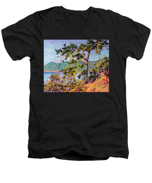North View Men's V-Neck T-Shirt