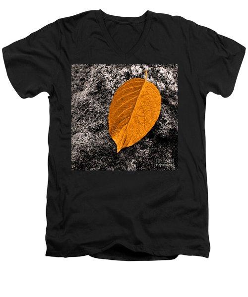 November Leaf Men's V-Neck T-Shirt