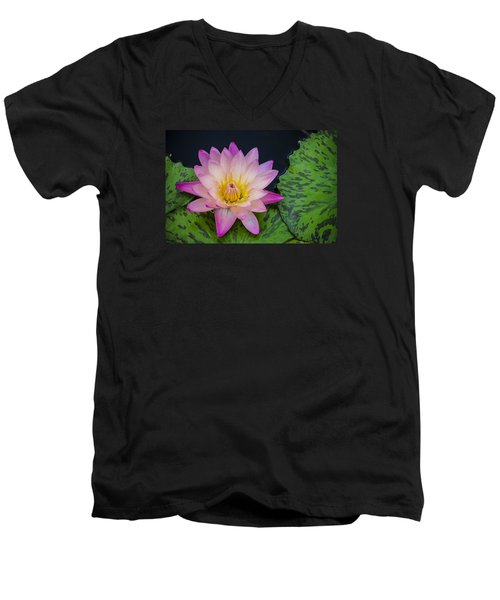 Nymphaea Hot Pink Water Lily Men's V-Neck T-Shirt by Deborah Smolinske