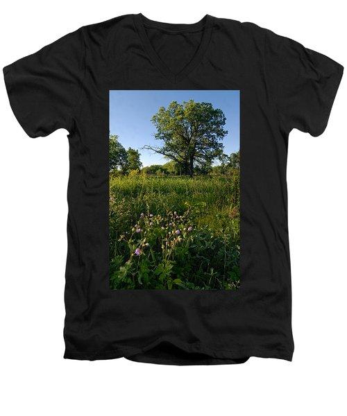 Oak Savanah Men's V-Neck T-Shirt