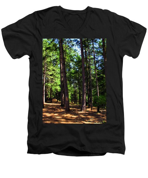 Oakrun Forest Men's V-Neck T-Shirt by Joyce Dickens