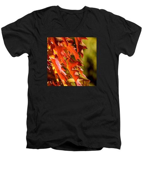 October Oak Leaves Men's V-Neck T-Shirt by Brian Chase