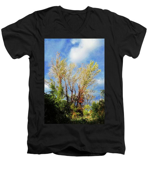 October Sunny Afternoon Men's V-Neck T-Shirt