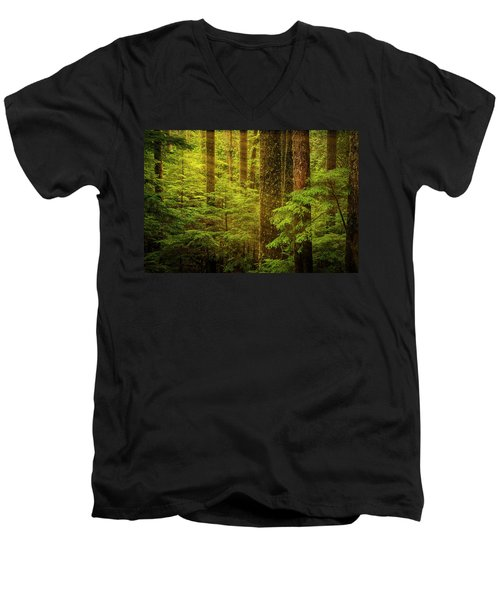 Of Elves And Faeries Men's V-Neck T-Shirt