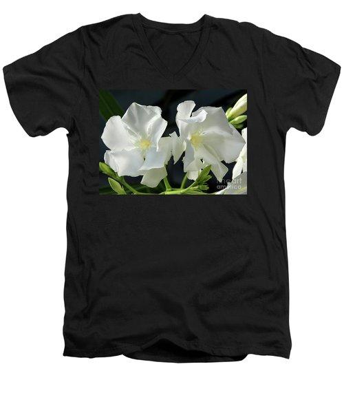Oleander Mont Blanc 1 Men's V-Neck T-Shirt