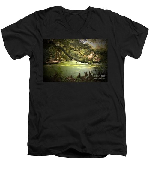 On Swamp's Edge Men's V-Neck T-Shirt