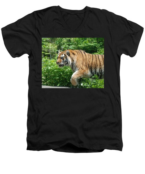 Men's V-Neck T-Shirt featuring the photograph On The Prowl by Richard Bryce and Family