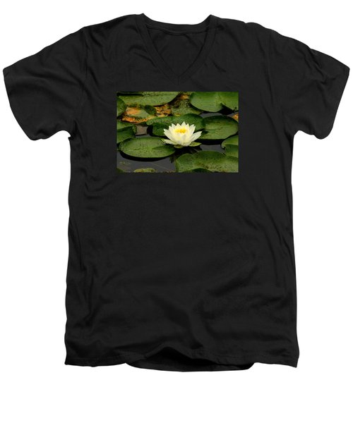 Once Upon A Lily Pad Men's V-Neck T-Shirt