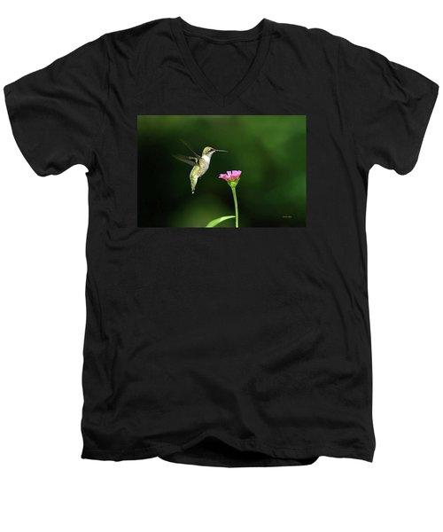 One Hummingbird Men's V-Neck T-Shirt