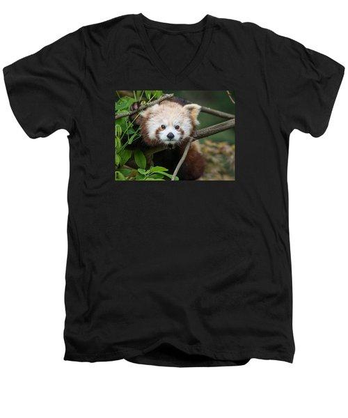 One Intense Critter Men's V-Neck T-Shirt