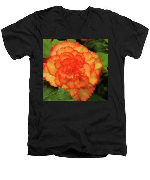 Orange Begonia Men's V-Neck T-Shirt by Haleh Mahbod