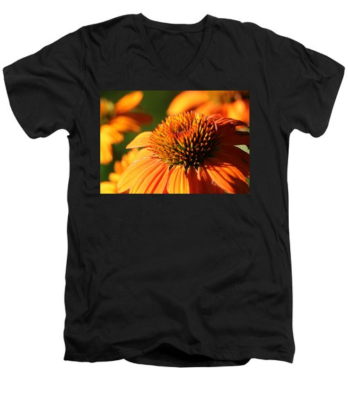 Orange Coneflower At First Light Men's V-Neck T-Shirt