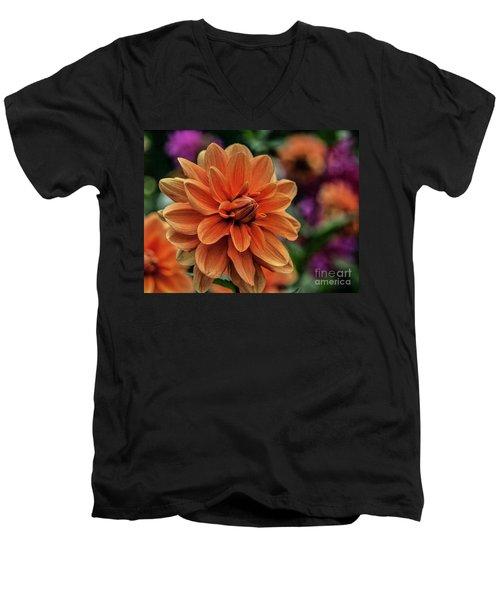 Orange Dahlias Men's V-Neck T-Shirt by Shirley Mangini