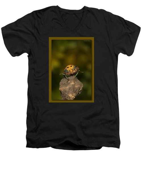 Men's V-Neck T-Shirt featuring the photograph Orange Stink Bug 002 by Kevin Chippindall