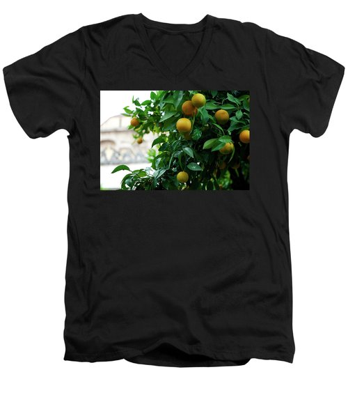 Orange Tree Men's V-Neck T-Shirt