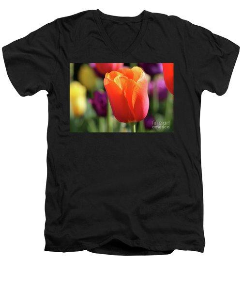 Orange Tulip In Franklin Park Men's V-Neck T-Shirt