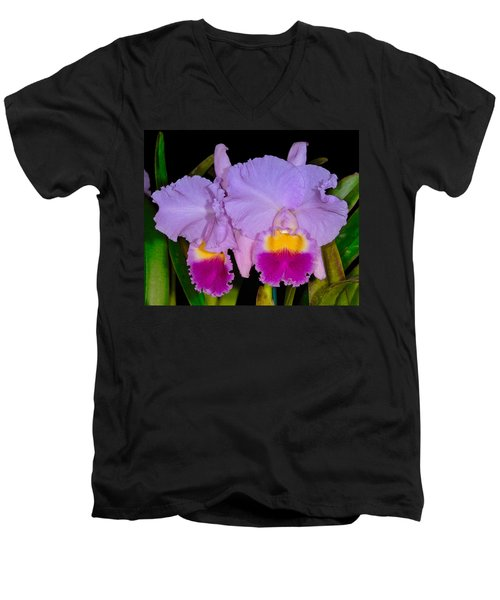 Orchid 428 Men's V-Neck T-Shirt