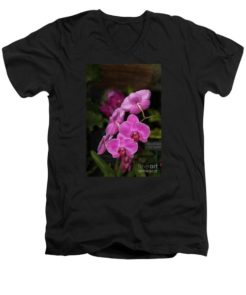Orchids Alicia Men's V-Neck T-Shirt by The Art of Alice Terrill