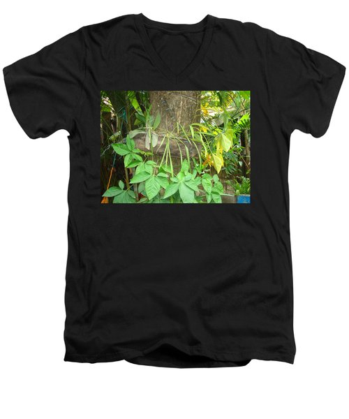 Orquidea Men's V-Neck T-Shirt