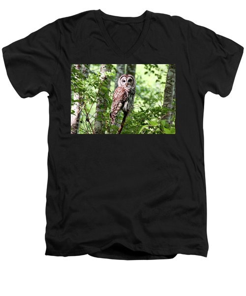 Owl In The Forest Men's V-Neck T-Shirt by Peggy Collins