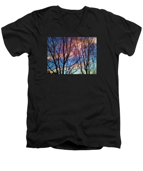 Paintbrush IIi Men's V-Neck T-Shirt