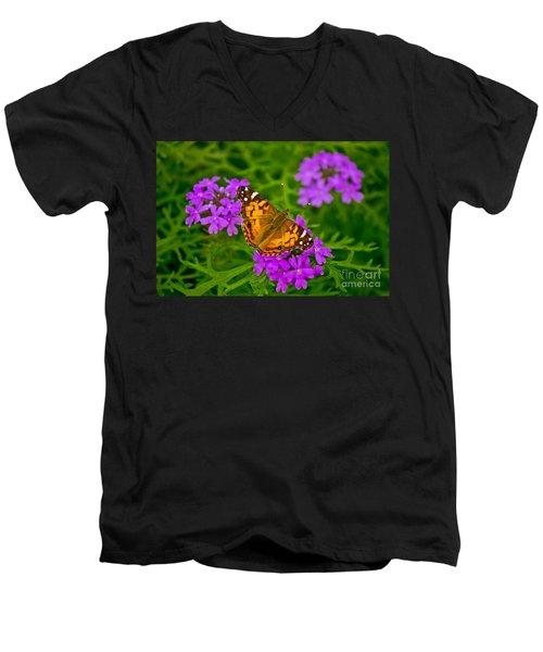 Painted Lady On Purple Verbena Men's V-Neck T-Shirt