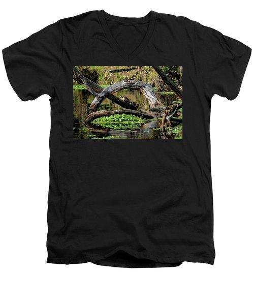 Painted Turtles Men's V-Neck T-Shirt by Paul Mashburn