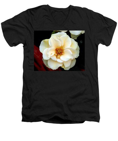 Men's V-Neck T-Shirt featuring the photograph Pale Beauty by Lynda Lehmann