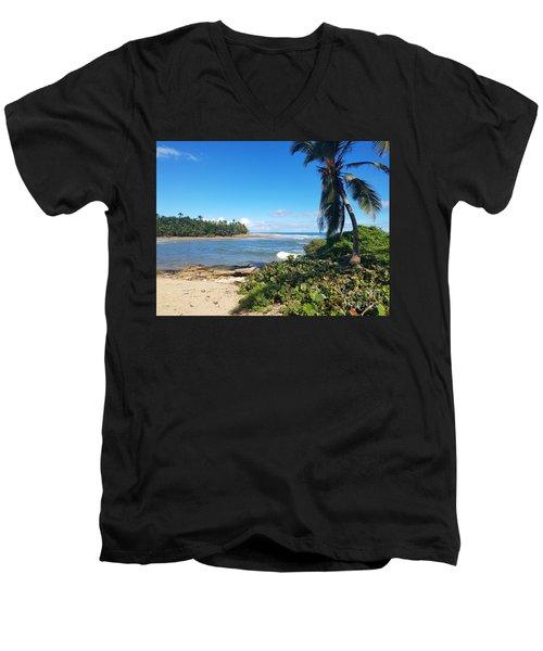 Palm Cove Men's V-Neck T-Shirt