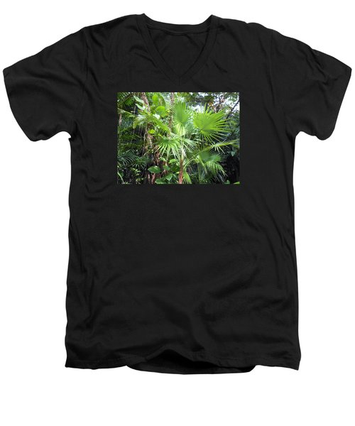 Men's V-Neck T-Shirt featuring the photograph Palm Tree by Kay Gilley