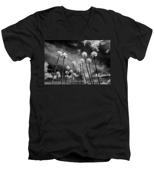 Palms Men's V-Neck T-Shirt by Sean Foster