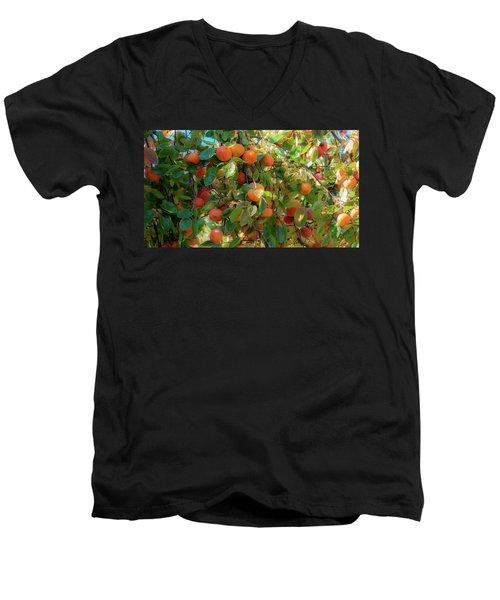 Paradise For Persimmons Men's V-Neck T-Shirt