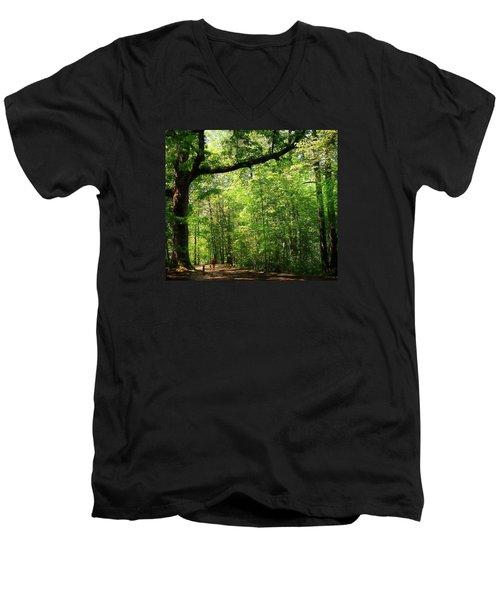 Paris Mountain State Park South Carolina Men's V-Neck T-Shirt by Bellesouth Studio